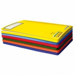 CUADERNO COLLEGE 100HJS 7MM...
